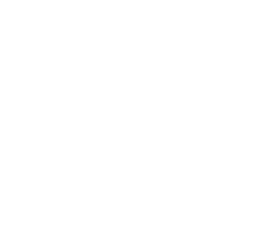 Logo Bögli ICT AG